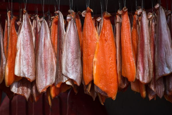 Salmon hanging in an ordered pattern for smoking